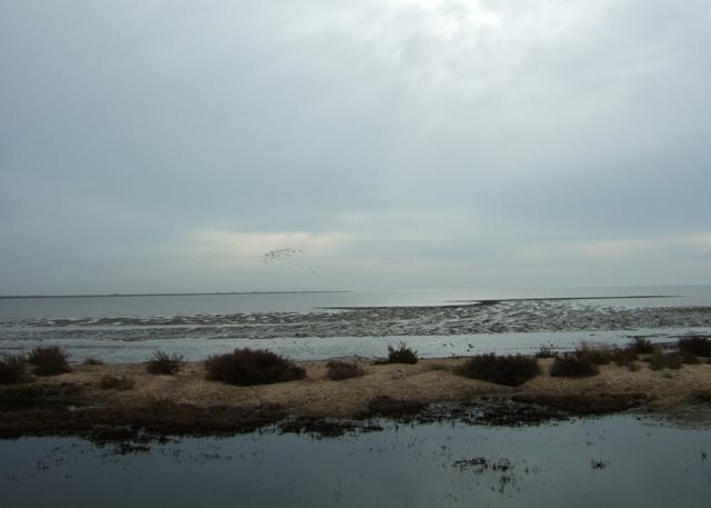 Tidal mud flats, East Mersea