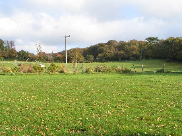 Camping field at Kloofs Caravan Park (1)