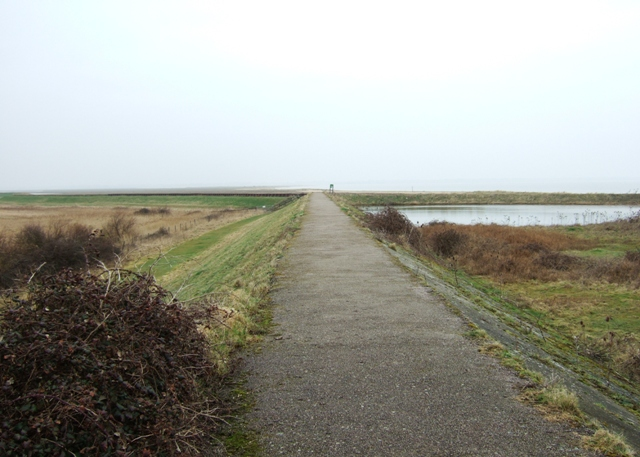 Hamford Water NNR