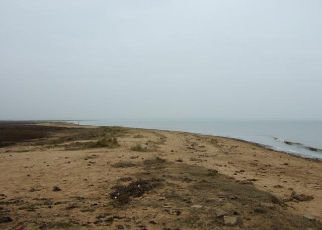 Beach at Hamford Water