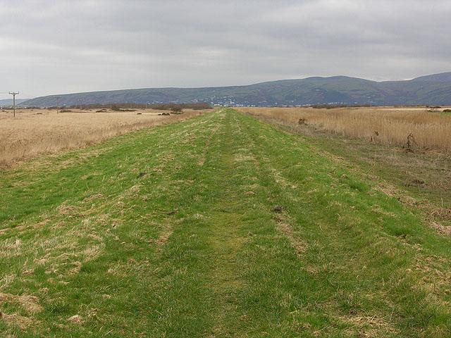 Footpath along the Leri cut
