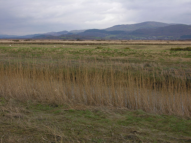 View over the Cors Fochno from the Leri cut