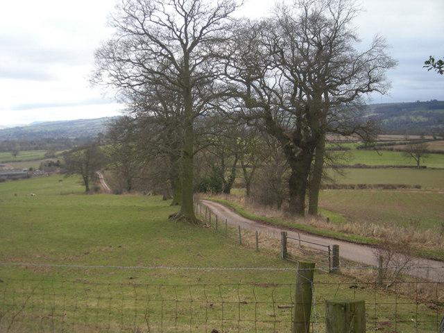 A lane to Tugford