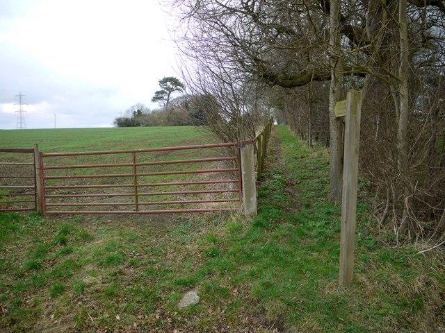 Footpath to Dalton Hillhead and Robsheugh