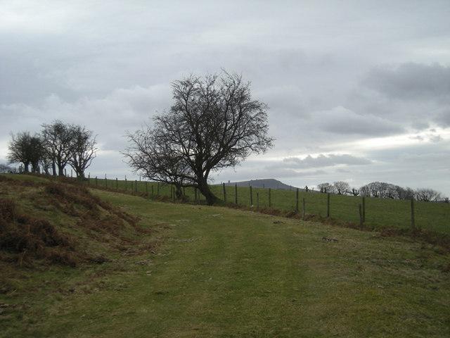 'The Jack Mytton Way' near Stoke St. Milborough