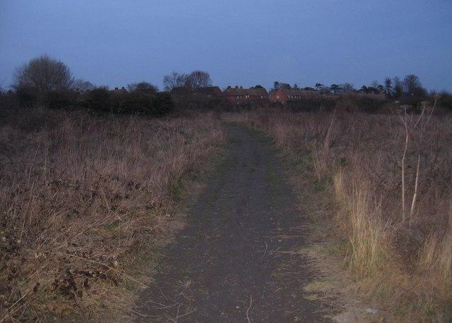 Popular short cut at dusk