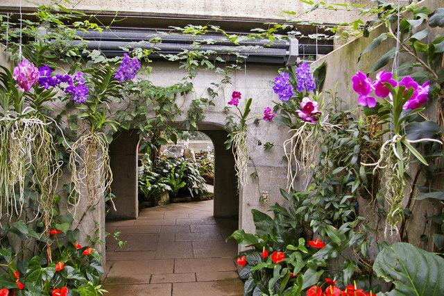 Walkway, Princess of Wales Conservatory, Kew Gardens, Surrey