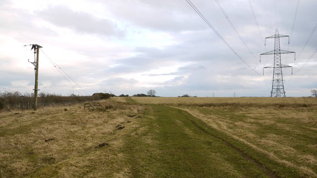 Winter pasture east of Dalton Hillhead