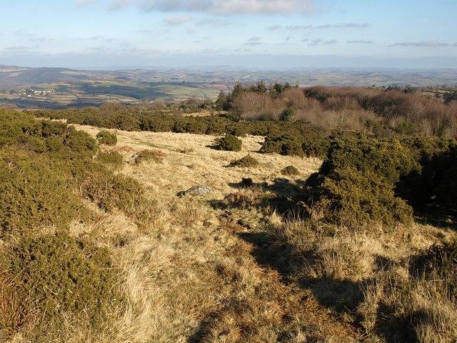 Moorland near Lud Gate (2)