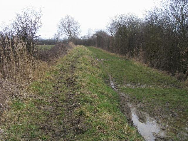 Bridleway on edge of Ot Moor