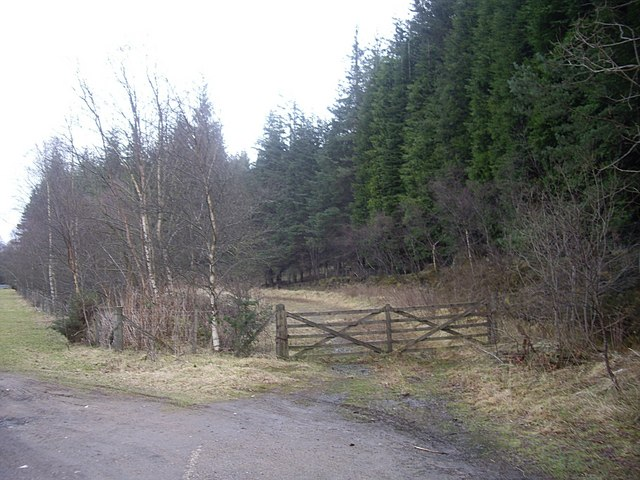 Access to Trustach Wood