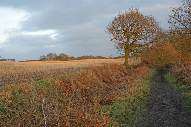 Farmland South of Blackley Hurst Hall Farm