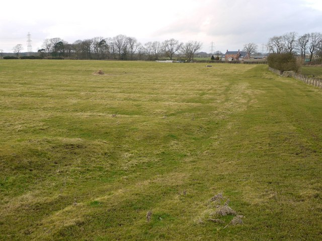 Ridge and furrow preserved in pasture south of Silverhill