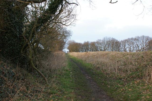The path North