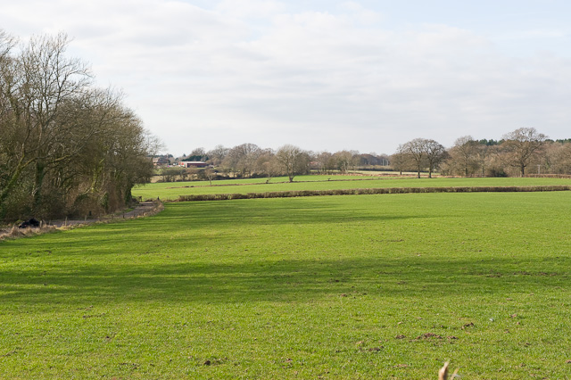 Fields at end of Hall Lands Lane