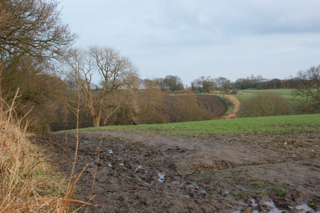 The view towards Garswood