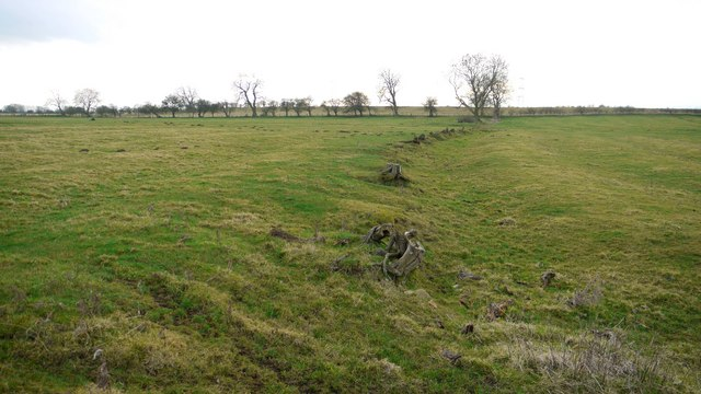 Remains of hedge through ridge and furrow fields