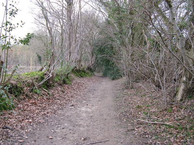 Bridleway to Jinkes Farm