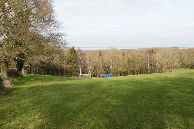 Park Hills Wood