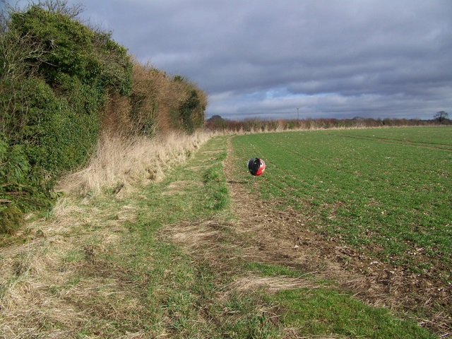 Footpath to Farnham