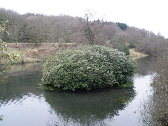 Otterford Lakes Nature Reserve