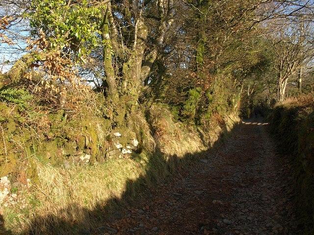 West Buckfastleigh Bridleway 14