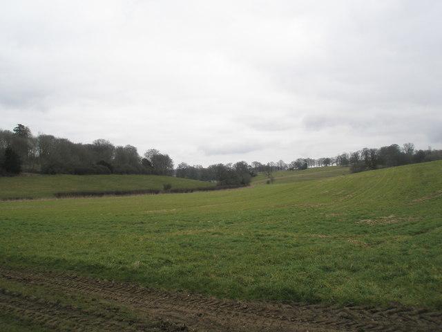 Rolling farmland just off Shell Lane