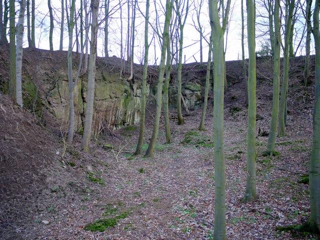 Eachwick Quarry (disused)
