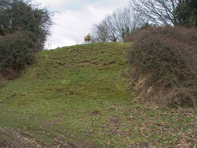 Motte at Stapleton
