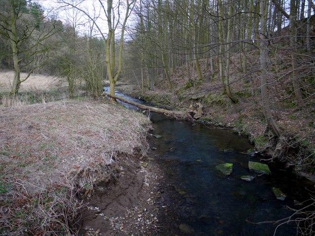 River Pont east of Dalton Mill