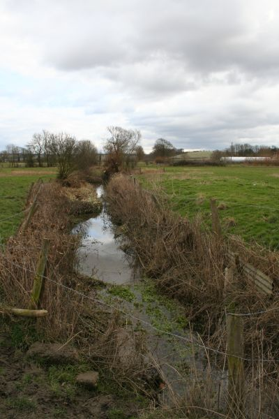 Ditch from the manor