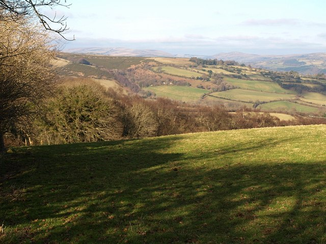 Field above Scae Wood