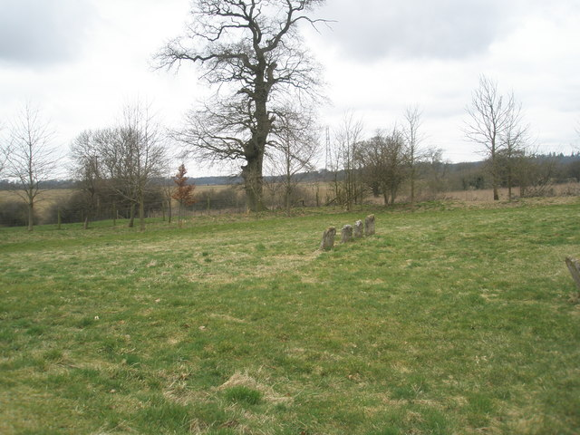 Isolated gravestones within the churchyard of St Peter ad Vincula, Colemore