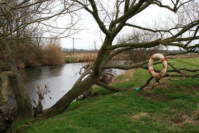 Life Buoy or Swing?