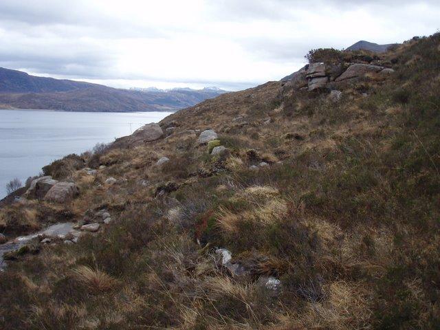 Hillside above Little Loch Broom