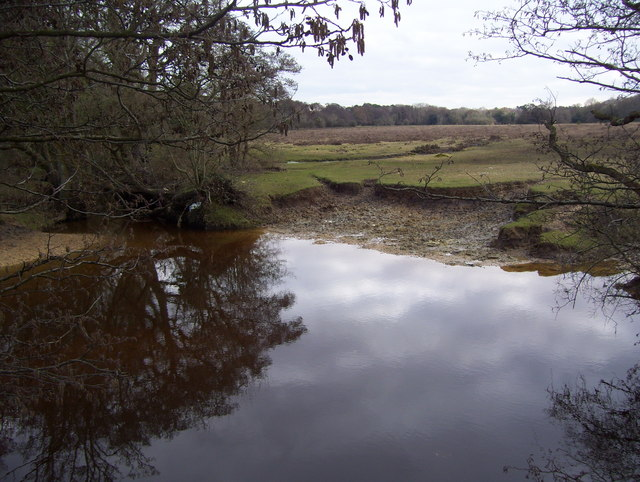 Beaulieu River at Fulliford Bog