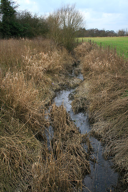 Field Drain near The Derwent