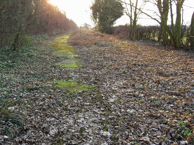 The disused Plantation Lane