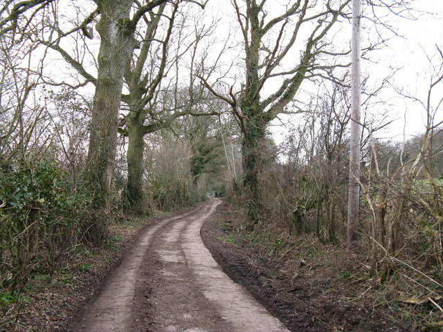 Bridleway to Greenhurst Farm