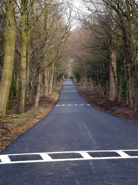 Resurfaced drive to become new entry for cars to Close House