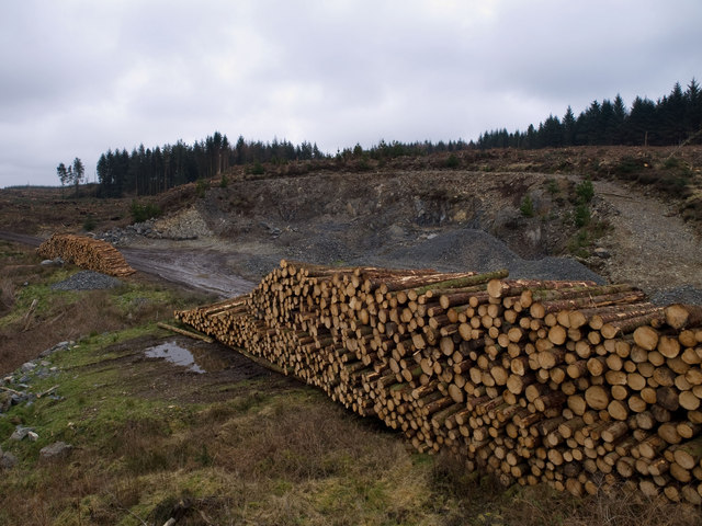 Quarry and timber stack