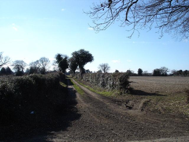 Farm track off Bucklesham Road