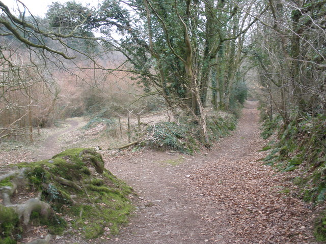 Path to Royston Water