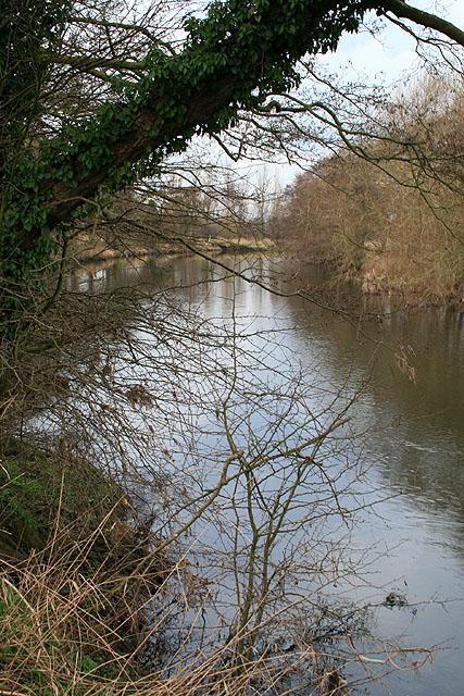 The River Derwent Near Ambaston Grange
