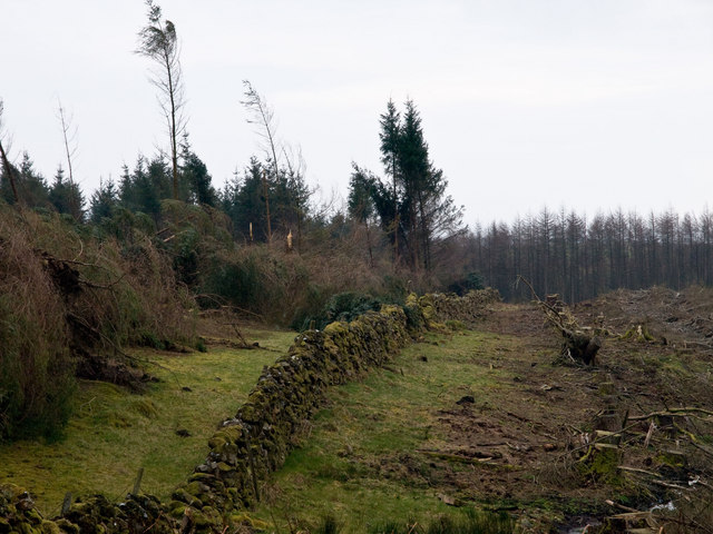 Drystane Dyke, Glenwhan Moor