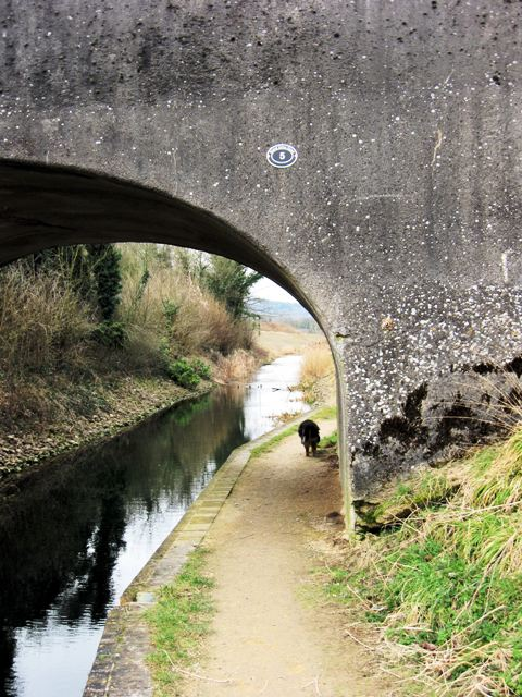 Bridge 5, Wendover Arm, Drayton Beauchamp, looking West