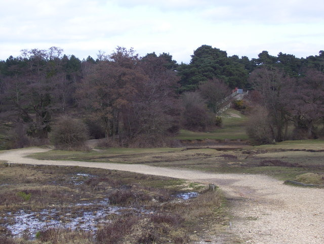 On Matley Heath: looking towards the railway line