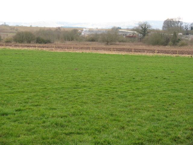 Green field , brown field