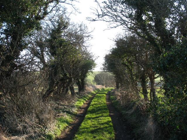 Track to Carrog