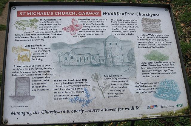 Wildlife in St. Michael's Churchyard